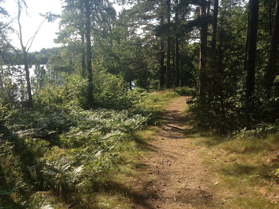 Det är bedårande vackert att vandra i Sverige också!