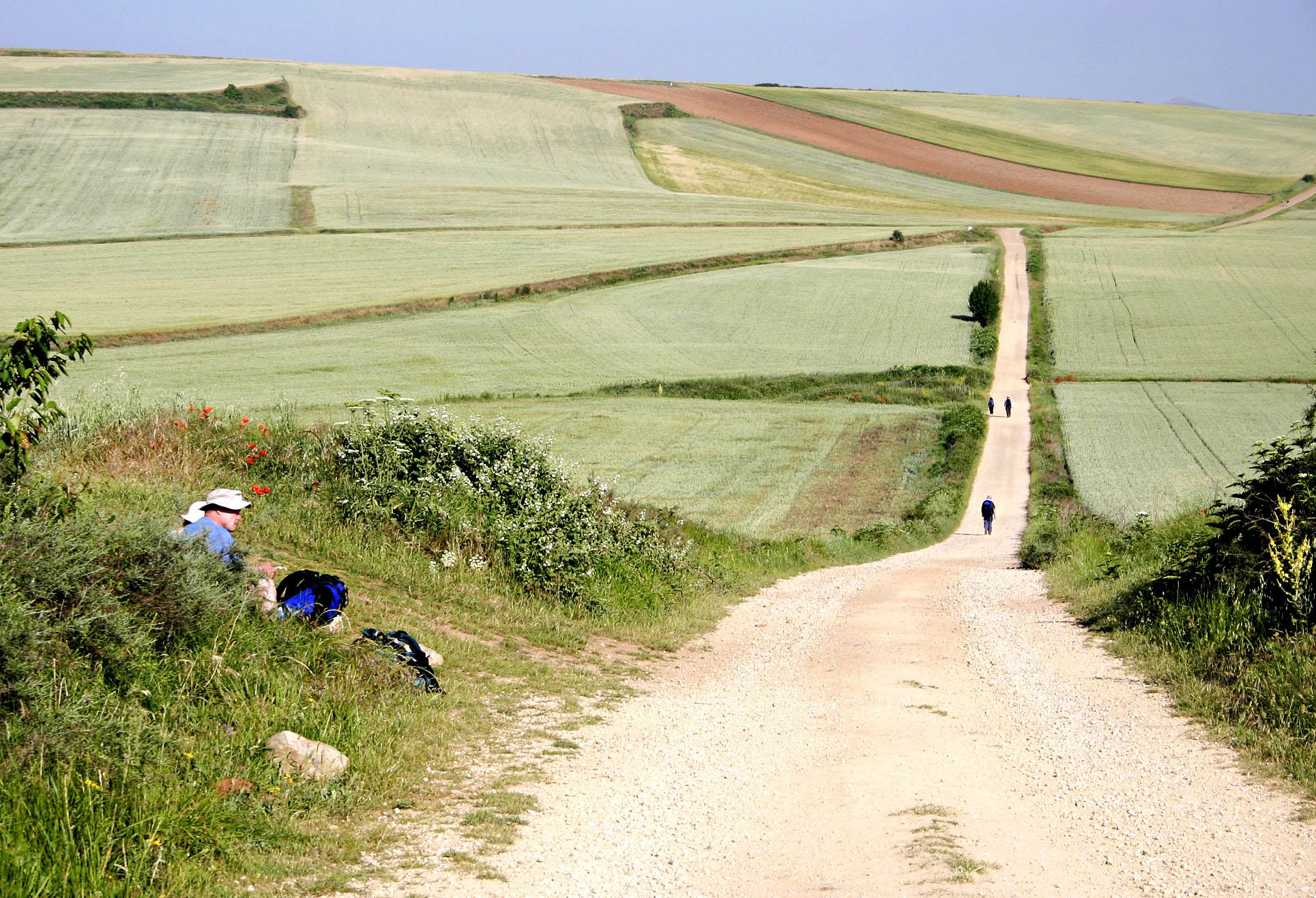 Drömmen om Caminon